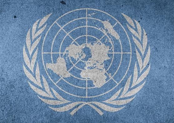 Бюльбюльоглу будет главой ЮНЕСКО - Foto 1
